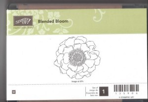 Stampin Up Blended Bloom Stamp