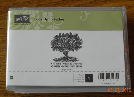 Stampin' Up! Look Up to Father