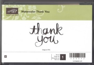Retired Watercolor Thank You Stamp