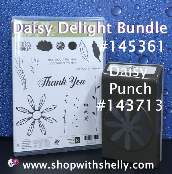 Stampin' Up! Daisy Delight Bundle