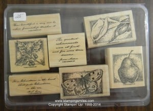Stampin' Up! Ageless Adornment 25