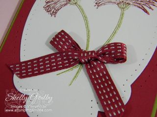 Reason_to_Smile_Raspberry_Ripple_Double_Stitched_Ribbon